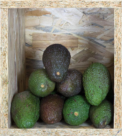 aguacates-fruteria-online